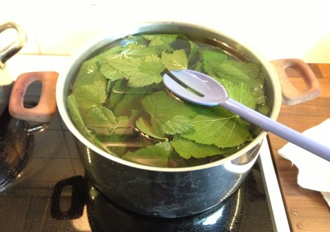 Water boiled, leaves added.
